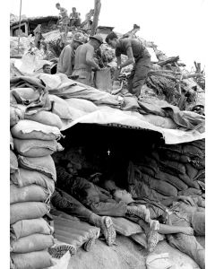 101st Air Cavalry troops build bunkers in Vietnam; 1968