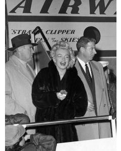 Actress Marilyn Monroe, 1954